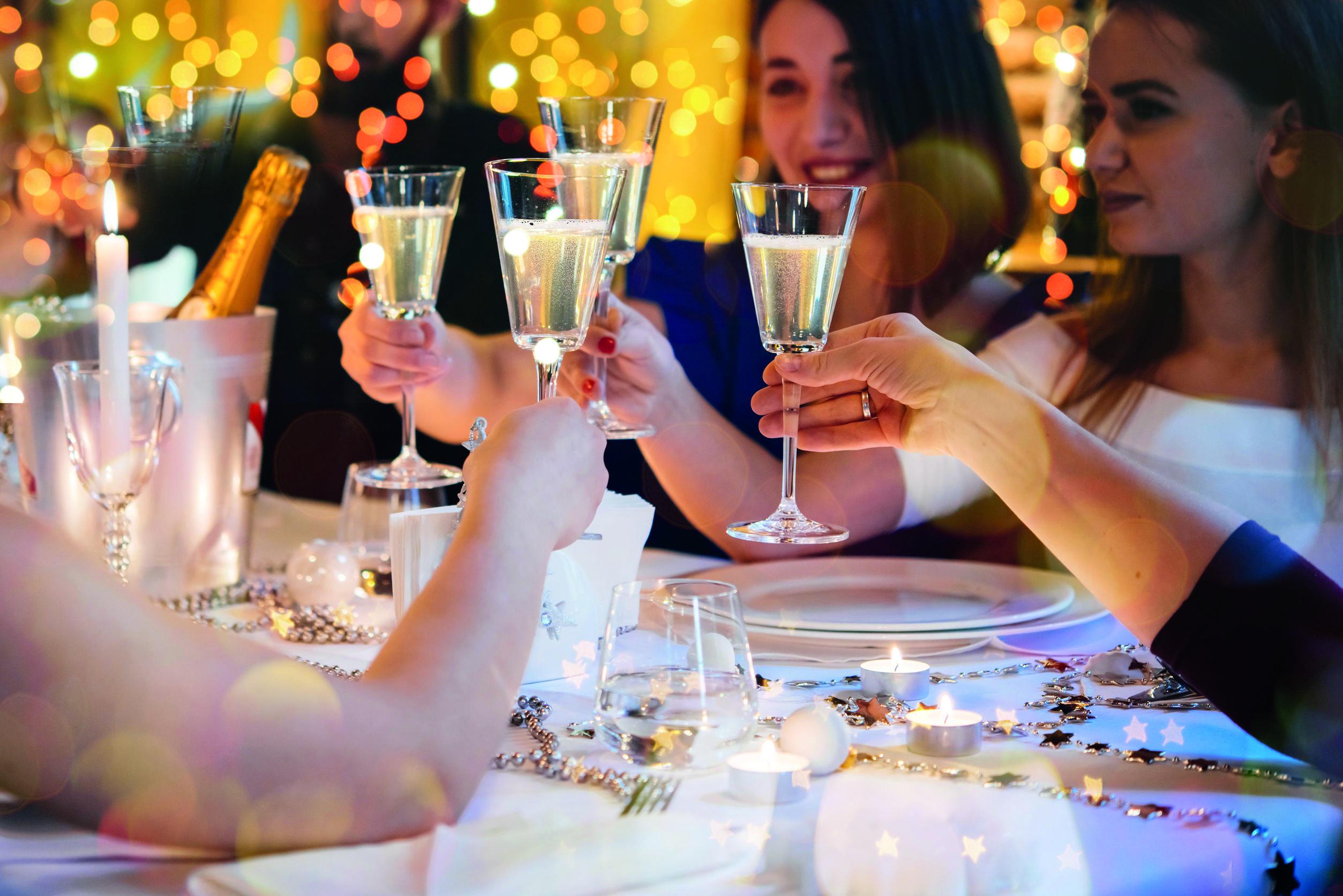 Festive Dinner Cheers
